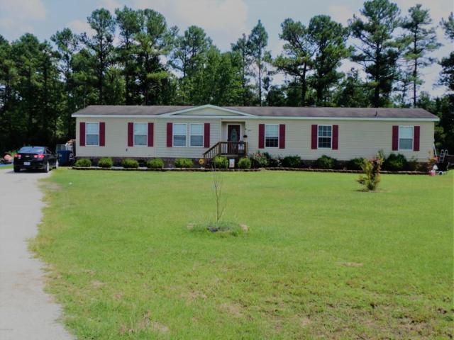 204 Daewoo Court, Beulaville, NC 28518 (MLS #100131284) :: Courtney Carter Homes