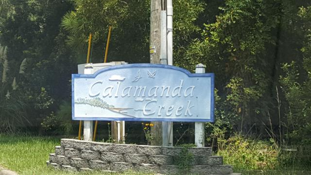 908 Calamanda Court Court, Morehead City, NC 28557 (MLS #100131737) :: Donna & Team New Bern