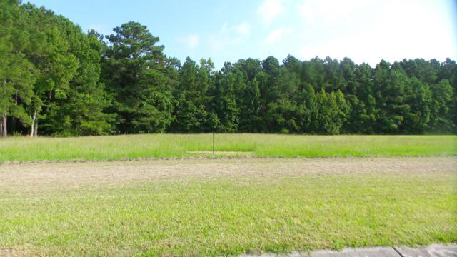 796 Southern Plantation Drive N, Oriental, NC 28571 (MLS #100131812) :: Donna & Team New Bern