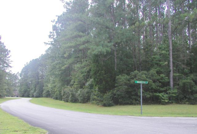 200 Sumter Drive, Havelock, NC 28532 (MLS #100131954) :: The Keith Beatty Team