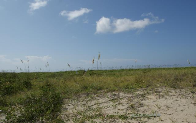 3713 E Beach Drive, Oak Island, NC 28465 (MLS #100132082) :: Harrison Dorn Realty