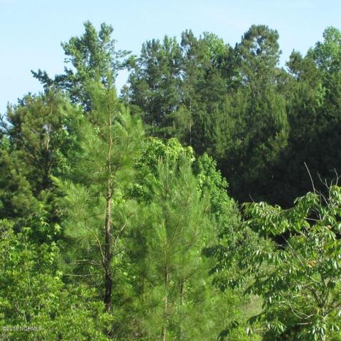 0 Camp Kirkwood Road, Watha, NC 28478 (MLS #100132227) :: RE/MAX Elite Realty Group