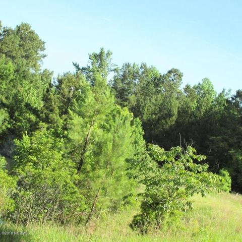 0 Camp Kirkwood Road, Watha, NC 28478 (MLS #100132239) :: RE/MAX Elite Realty Group