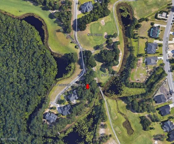 214 Ashworth Manor Court, Wilmington, NC 28412 (MLS #100132322) :: David Cummings Real Estate Team
