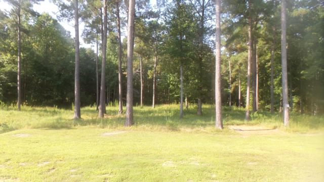 627 Southern Plantation Drive N, Oriental, NC 28571 (MLS #100132424) :: Courtney Carter Homes