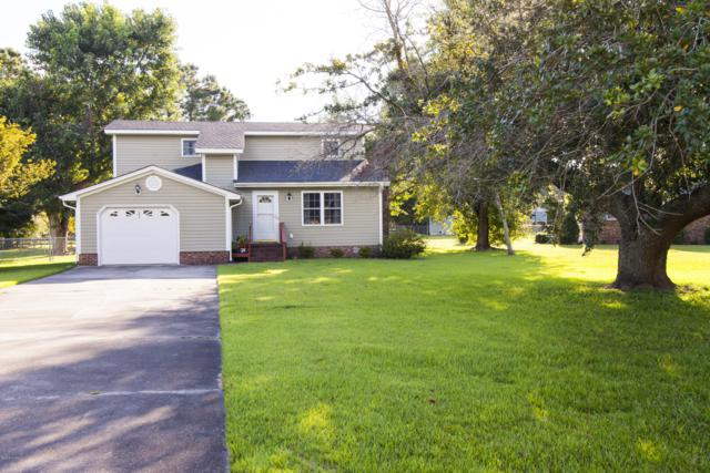 303 Barbara Drive, New Bern, NC 28562 (MLS #100132484) :: Harrison Dorn Realty
