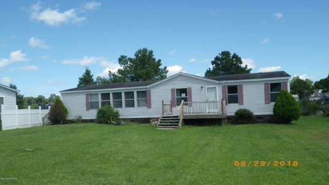 108 Buckskin Drive, Maysville, NC 28555 (MLS #100132514) :: RE/MAX Elite Realty Group