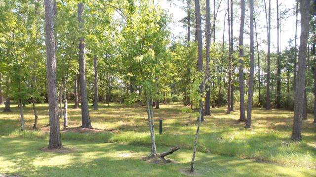 142 Broadview Point, Oriental, NC 28571 (MLS #100132552) :: Courtney Carter Homes