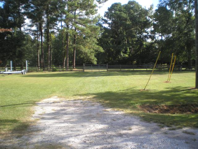 147 Brentwood Drive, Wilmington, NC 28401 (MLS #100132573) :: RE/MAX Essential