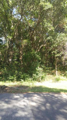 109 SW 24th Street, Oak Island, NC 28465 (MLS #100132974) :: RE/MAX Essential