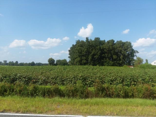 0 Plantation Road, Trenton, NC 28585 (MLS #100133124) :: Harrison Dorn Realty
