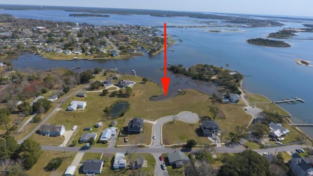 105 Bridgeview Lane, Swansboro, NC 28584 (MLS #100133208) :: Coldwell Banker Sea Coast Advantage