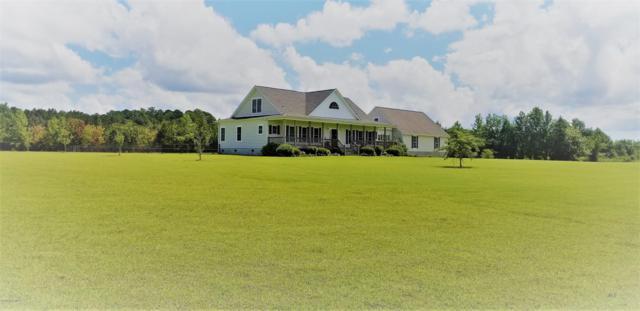 223 Hadley Collins Road, Maysville, NC 28555 (MLS #100133696) :: RE/MAX Elite Realty Group