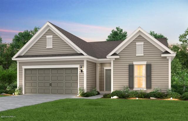 807 Broomsedge Terrace, Wilmington, NC 28412 (MLS #100133895) :: David Cummings Real Estate Team