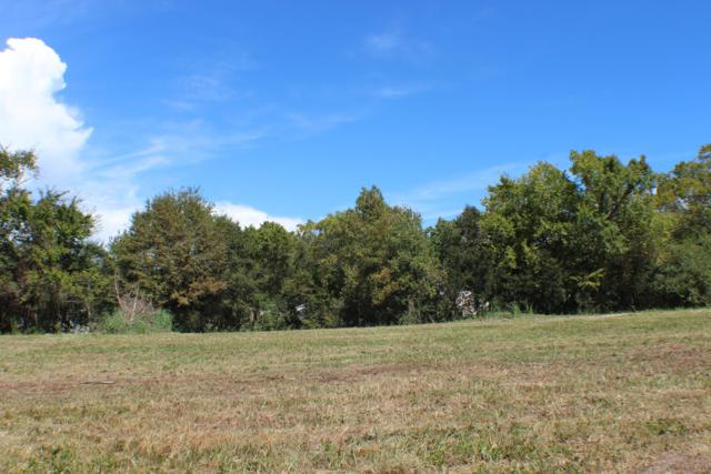 Lot 20 Mallard Bay Road, Hampstead, NC 28443 (MLS #100134067) :: RE/MAX Elite Realty Group