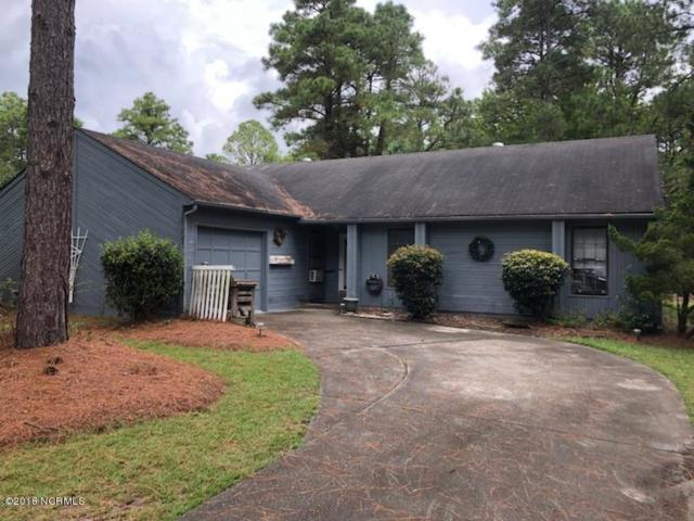 1802 Caracara Drive, New Bern, NC 28562 (MLS #100134163) :: Courtney Carter Homes