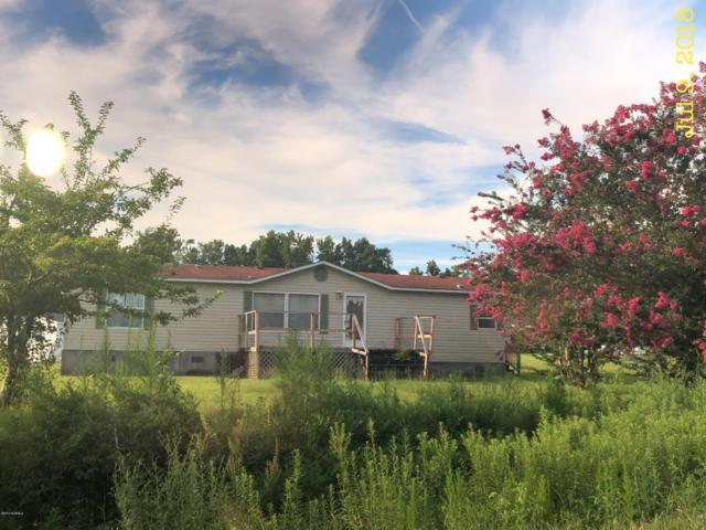 2087 Sarecta Road, Beulaville, NC 28518 (MLS #100134277) :: Courtney Carter Homes