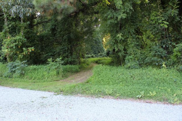 3930 Gilead Shores Road, Blounts Creek, NC 27814 (MLS #100134387) :: Berkshire Hathaway HomeServices Prime Properties