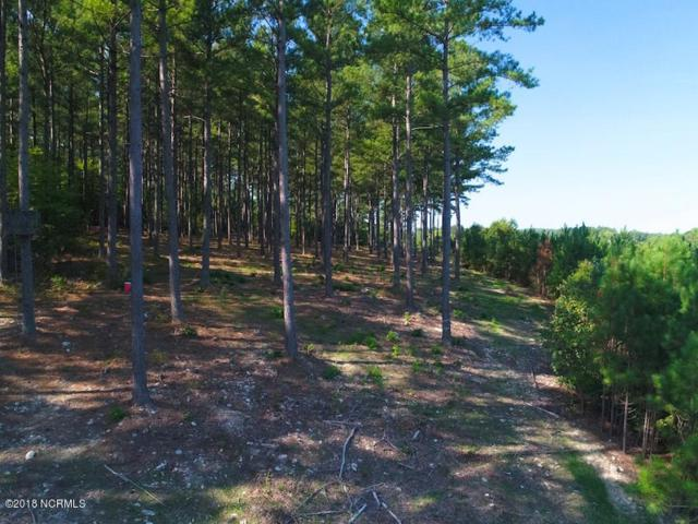Off E Gargus Road, Moncure, NC 27559 (MLS #100134417) :: Berkshire Hathaway HomeServices Prime Properties