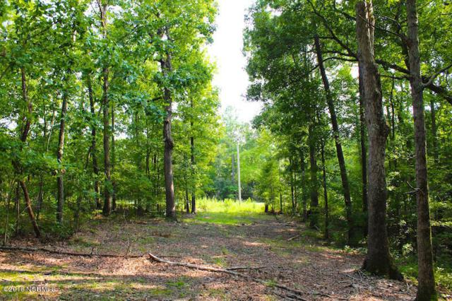 Off Mt View Church Road, Moncure, NC 27559 (MLS #100134418) :: Berkshire Hathaway HomeServices Prime Properties