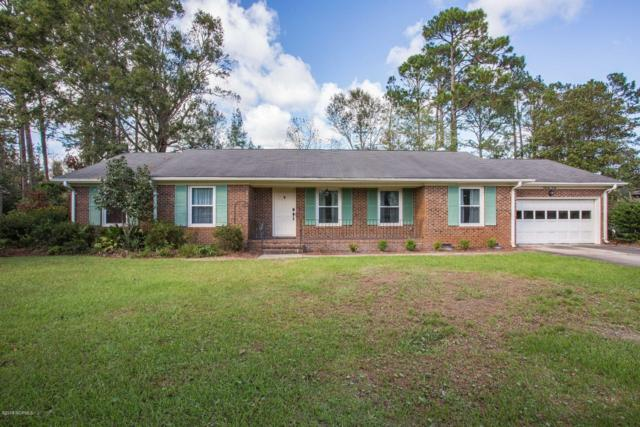 4601 Terry Lane, Wilmington, NC 28405 (MLS #100136219) :: Vance Young and Associates