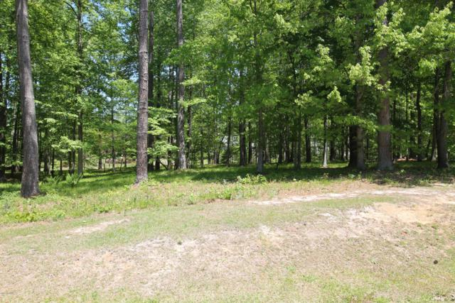 Lot 440 Merrimack Place, Chocowinity, NC 27817 (MLS #100136247) :: Courtney Carter Homes