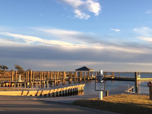 210 Crystal Water Place, Newport, NC 28570 (MLS #100136251) :: The Keith Beatty Team