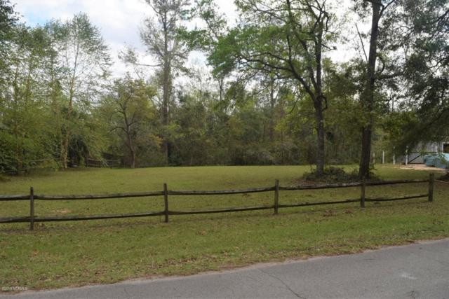 Lot 8 Goose Neck Road, Rocky Point, NC 28457 (MLS #100136592) :: Courtney Carter Homes