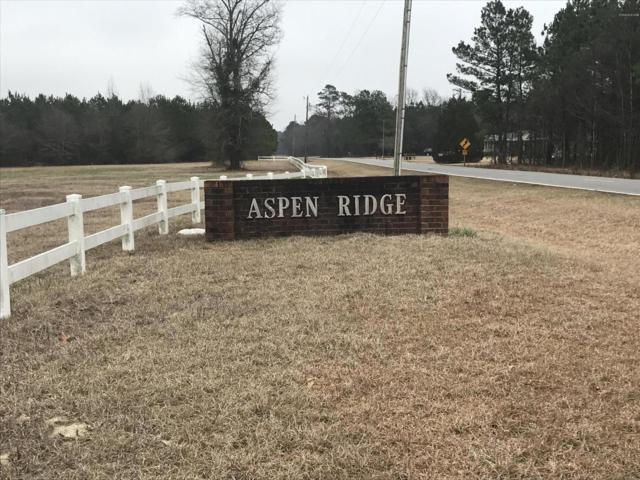 7 Aspen Ridge Court, Deep Run, NC 28525 (MLS #100136737) :: Donna & Team New Bern