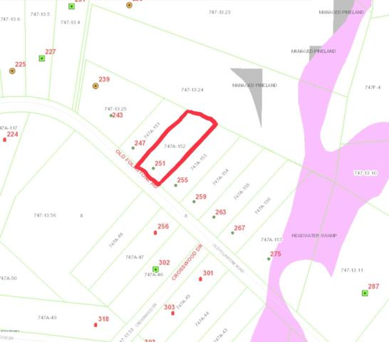 251 Old Folkstone Road, Holly Ridge, NC 28445 (MLS #100136926) :: Century 21 Sweyer & Associates