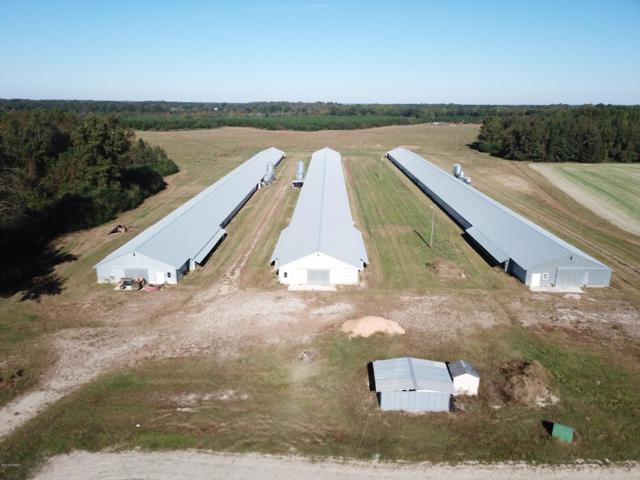 5116 Swift Creek School Road, Whitakers, NC 27891 (MLS #100137451) :: Century 21 Sweyer & Associates