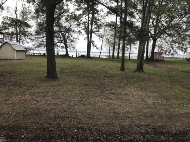 2841 Waccamaw Shores Road, Lake Waccamaw, NC 28450 (MLS #100137650) :: The Keith Beatty Team