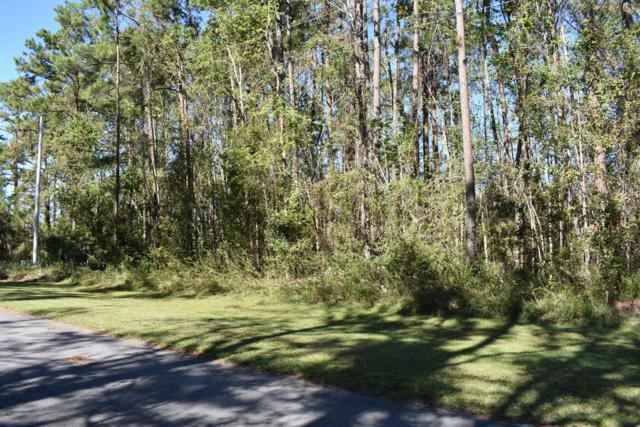 113 Dolphin Way Drive, Beaufort, NC 28516 (MLS #100137682) :: The Keith Beatty Team