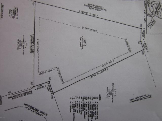 409 Meadowland Circle, Jacksonville, NC 28540 (MLS #100137848) :: RE/MAX Elite Realty Group