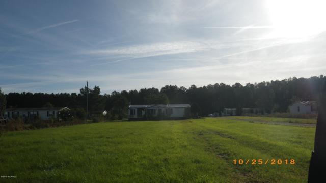 1077 Haw Branch Road, Beulaville, NC 28518 (MLS #100137894) :: Harrison Dorn Realty