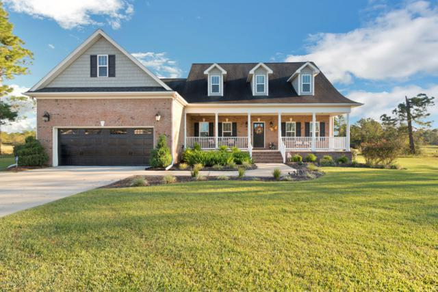 427 Meadowland Circle, Jacksonville, NC 28454 (MLS #100138022) :: RE/MAX Elite Realty Group