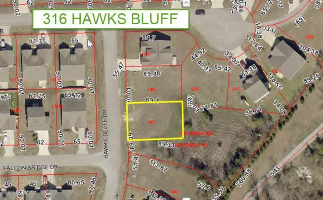 316 Hawks Bluff Drive, New Bern, NC 28560 (MLS #100138259) :: Courtney Carter Homes