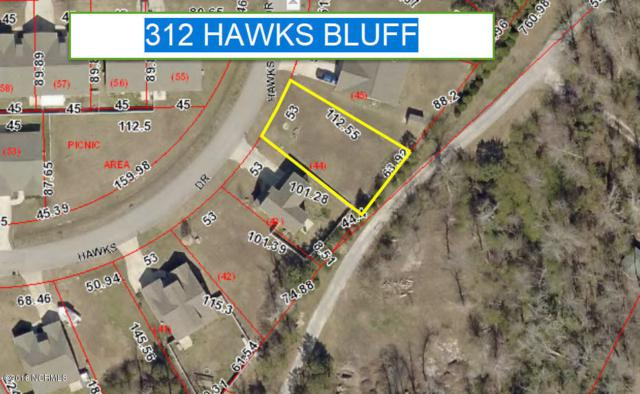 310 Hawks Bluff Drive, New Bern, NC 28560 (MLS #100138261) :: Courtney Carter Homes