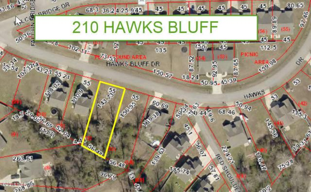 210 Hawks Bluff Drive, New Bern, NC 28560 (MLS #100138266) :: Courtney Carter Homes