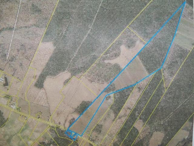000 Wyse Fork Road, Trenton, NC 28585 (MLS #100138563) :: Harrison Dorn Realty