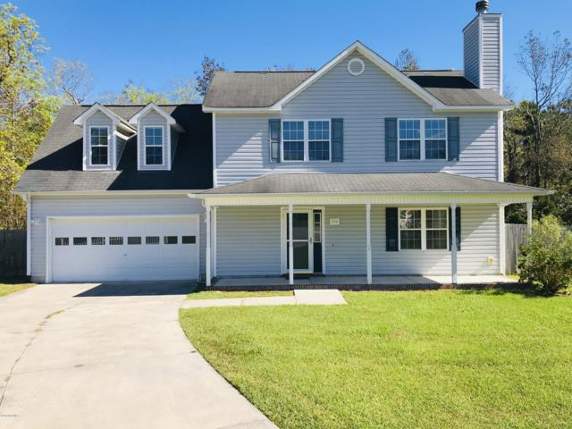 204 Smallberry Court, Sneads Ferry, NC 28460 (MLS #100138643) :: Chesson Real Estate Group