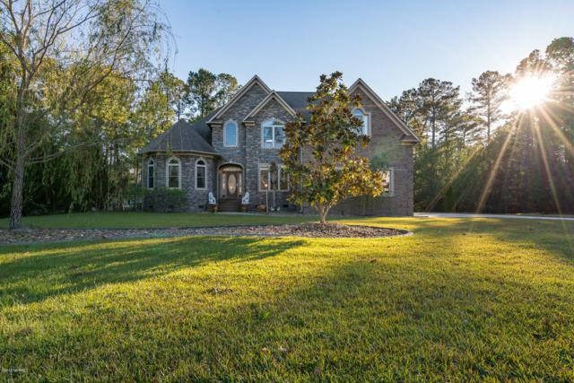 711 Taberna Circle, New Bern, NC 28562 (MLS #100138948) :: Harrison Dorn Realty