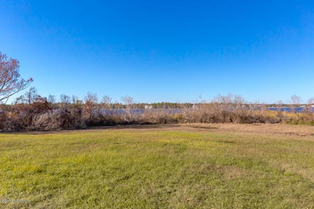 173 Big Hammock Point Road, Sneads Ferry, NC 28460 (MLS #100139191) :: Century 21 Sweyer & Associates
