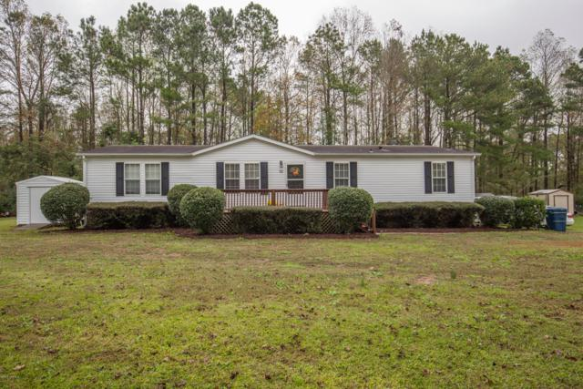 122 Indian Cave Drive, Richlands, NC 28574 (MLS #100139350) :: RE/MAX Elite Realty Group