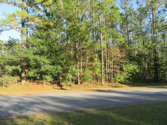 33 Phillips Drive, Arapahoe, NC 28510 (MLS #100139703) :: RE/MAX Essential