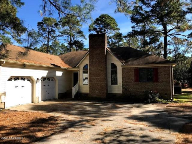 1308 Caracara Drive, New Bern, NC 28560 (MLS #100139958) :: The Oceanaire Realty