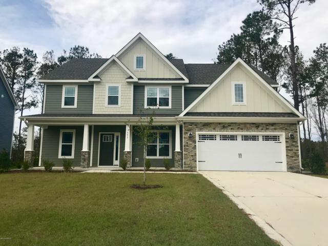 351 W Goldeneye Lane, Sneads Ferry, NC 28460 (MLS #100140187) :: Coldwell Banker Sea Coast Advantage