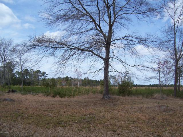 0 E Waverly Drive, Burgaw, NC 28425 (MLS #100140426) :: Chesson Real Estate Group