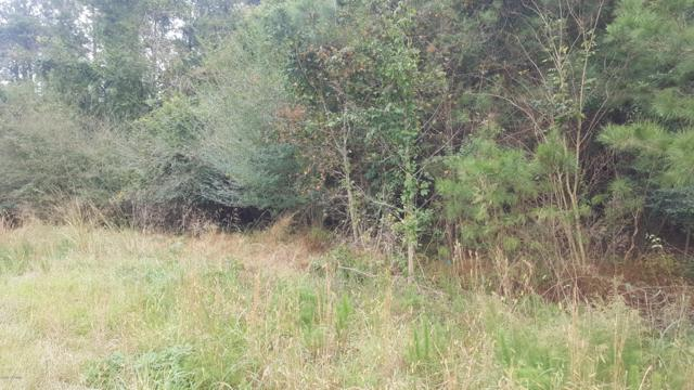 3804 Hwy 258 Highway N, Snow Hill, NC 28580 (MLS #100140427) :: Chesson Real Estate Group