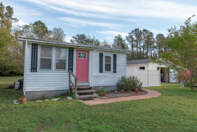 119 Tasha Street, Sneads Ferry, NC 28460 (MLS #100140876) :: Harrison Dorn Realty
